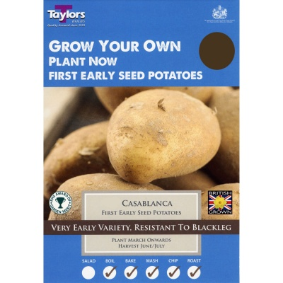 Taylors Casablanca Seed Potato Taster Pack