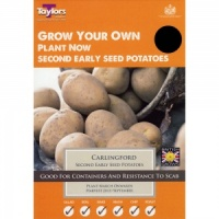 Taylors Carlingford Seed Potato Taster Pack