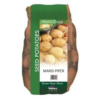Taylors Maris Piper Seed Potatoes 2kg Carry Net