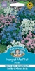 Mr Fothergills FORGET ME NOT Mixed - Seeds