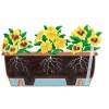 Stewart Balconniere Trough Planter 70cm - Terracotta