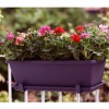 Elho Barcelona Trough Planter 50cm - Cherry