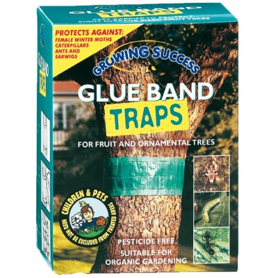 Growing Success Glue Band Traps - Westland
