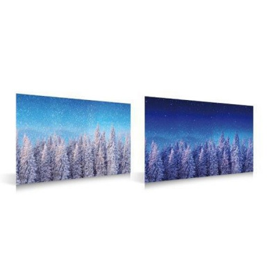 MyVillage™ Winter Forest Day & Night Double Side Backdrop 59 x 39cm (MYP10)