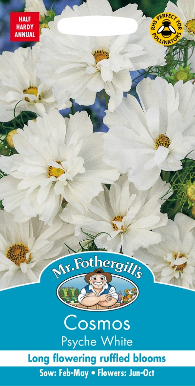 Mr Fothergills COSMOS Psyche White