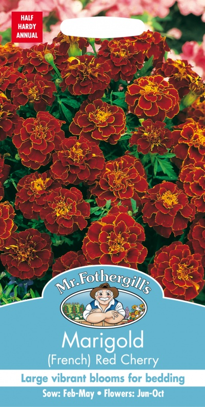 Mr Fothergills Marigold (French) Red Cherry Seeds