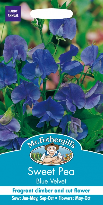 Mr Fothergills Sweet Pea Blue Velvet Seeds