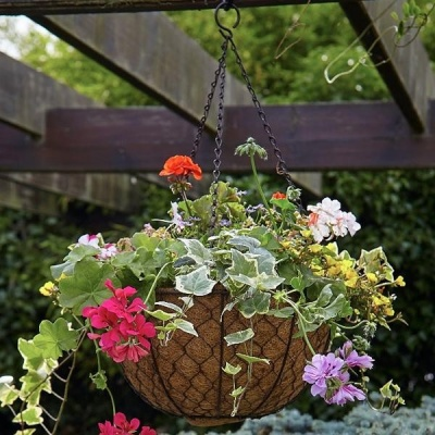 Tom Chambers Decorative Hanging Basket Liner