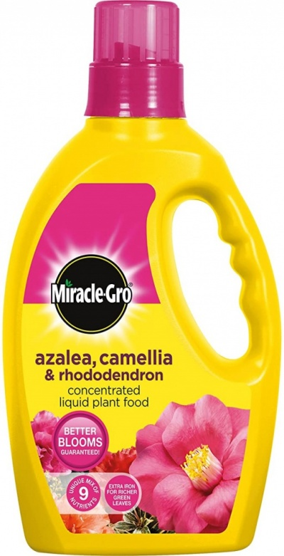 Miracle-Gro Azalea, Camellia and Rhododendron Liquid Plant Food 1ltr