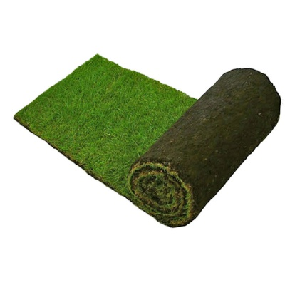 Lawn Turf  Per Roll Local Delivery