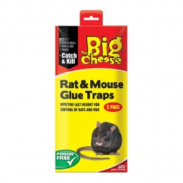 STV Rat Glue Traps