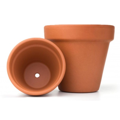 Woodlodge Traditional Terracotta Clay Plant Pot 8''
