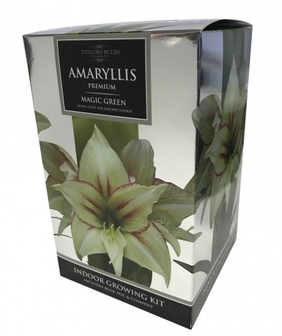 EXOTIC AMARYLLIS GIFT PACK containing a selection of: