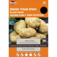 Taylors Maris Peer Seed Potato Taster Pack