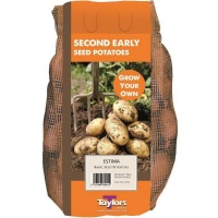 Taylors Bulbs Estima Seed Potatoes 2kg Carry Net
