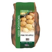 Taylors Bulbs Pink Fir Apple Seed Potatoes 2kg Carry Net