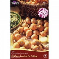 Taylors Golden Gourmet Shallot 12 Bulbs Pack