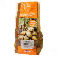 Taylors Bulbs Kestrel Seed Potatoes 2kg Carry Net