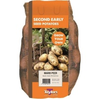 Taylor Bulbs Maris Peer Seed Potatoes 2kg Carry Net