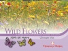 T&M Wild Flower Ultimate Mix